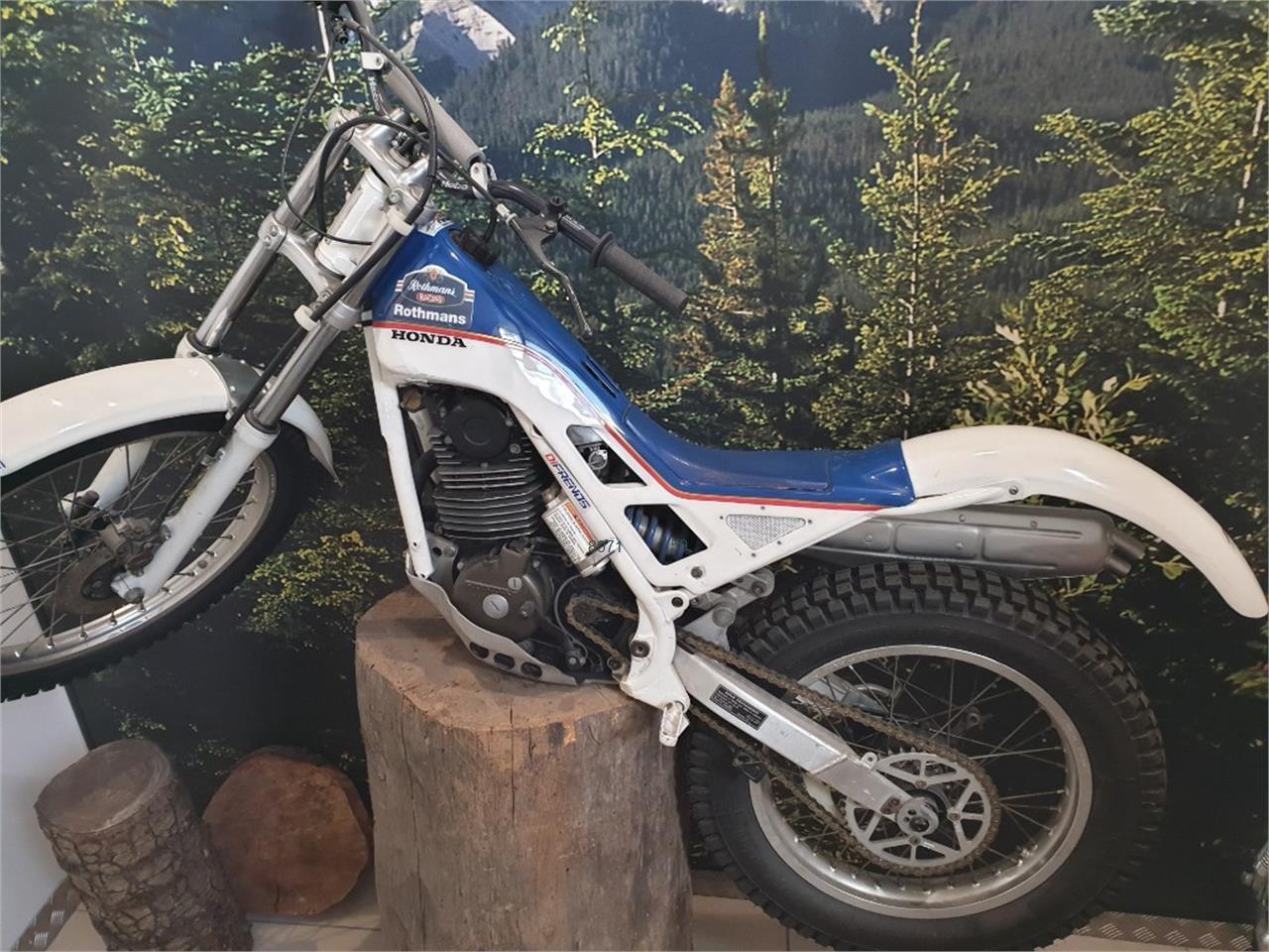HONDA RTL 250