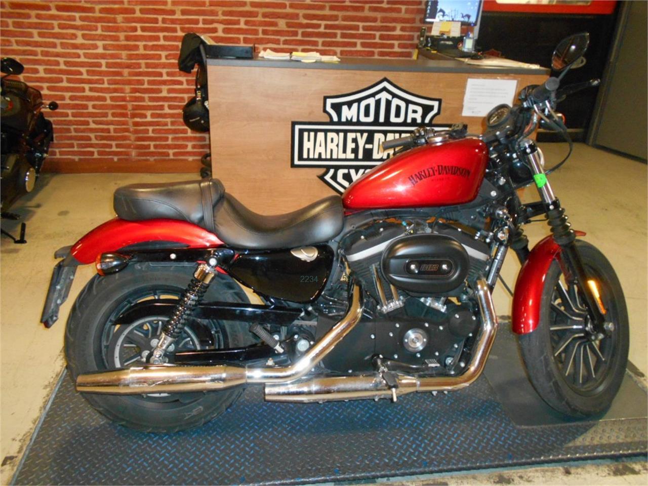 HARLEY DAVIDSON Sportster 883 Iron de venta